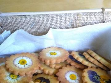 ciasteczka kwiatuszki - świąteczne ciasteczka Oli