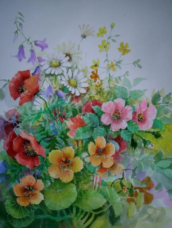 akvarell vadvirágok (13×11)