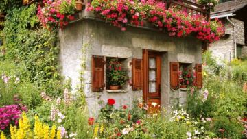 cottage house - rural house among flowers, nature