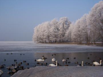 Περιοχή Drawskie Lake το χειμώνα. - Περιοχή Drawskie Lake το χειμώνα.
