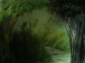 Fantastyczny las - Las (biocenoza leśna) – kompleks roślinności swoisty dla danego kontynentu geograficznego, char