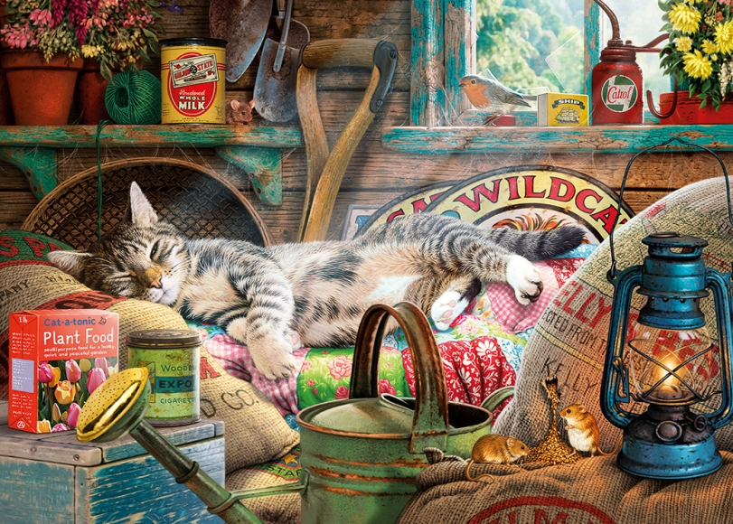 de kat slaapt, de muizen spelen - de kat slaapt en de muizen spelen (11×8)