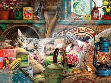 kot śpi , myszy harcują - kot śpi , a myszy harcują