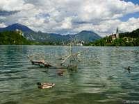 O priveliște fabuloasă - Vacanță, vizitarea obiectivelor turistice, timp liber, vacanță
