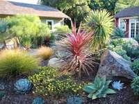 The beauty of the garden - The beauty of the garden, rockeries, landscape