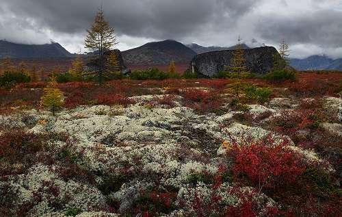 Őszi táj - Ősz Kolyma, Oroszország (13×9)