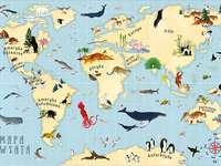 Mapa světa. - Pro děti. Mapa světa.