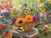 Difficult puzzle. - Birds. Difficult puzzle.