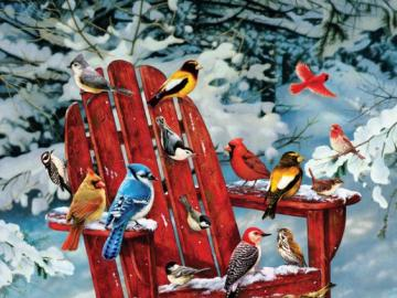 Colorful birds. - Colorful birds on the snow.