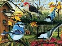 Vogels - puzzelspel