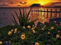logické hry, květiny, jezero