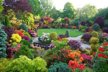 Garden privacy - Garden seclusion, colorful flowers, shrubs, bench