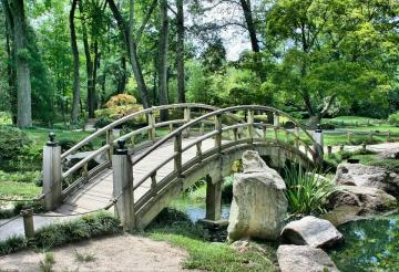 Bridge in the park - Park - a recreational area, usually with a lot of flora, including often wooded trees Bridge in the