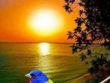 Bajeczny widok - Wakacje , lato, odpoczynek , urlop