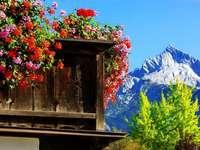 гледка към планината