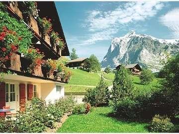 Wetterhorn. - Bernese-Wetterhorn Alps.