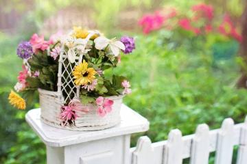 Flower basket - Different colored flowers in a small basket.