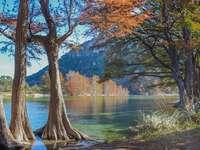 Höst vid floden - Färgglada blad och en lugn flod.