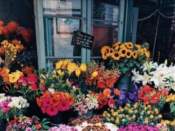 Stoisko kwiatowe - Stoisko z kwiatami, piękne kwiatki