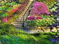 стълби към градината