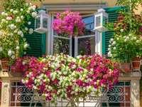 цветя на балкона