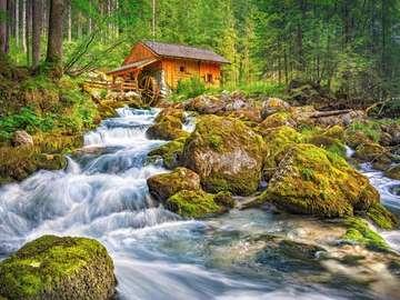 mulino ad acqua vicino alla foresta - mulino ad acqua vicino alla foresta, fiume, pietre