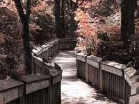 Ένα άλλο δρομάκι - Mostek w parku prowadzi nas