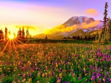 Bajeczny widok - Wakacje , lato, urlop, wypoczynek