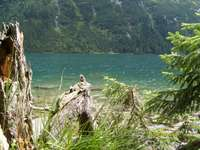Charme d'été au bord de l'eau - Vacances sur le Sea Eye