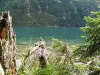 Sommarcharm vid vattnet - Semester på Morskie Oko