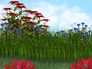 Pond and flowers - Colorful flowers and a pond.