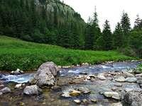 Kościeliski Stream - Un ruisseau de montagne coule