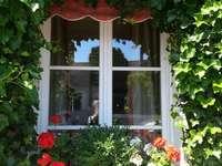 Очарователен прозорец - Прозорецът с цветя има много чар.