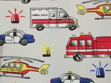privileged vehicles - ambulance fire brigade vehicles