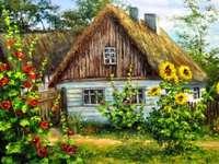 country cottage - rural cottage, garden, mallow, sunflowers, summer