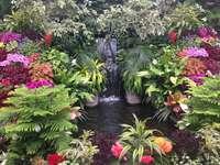 Virágoskert - Kerti tó. Boldogság oázisa. Kaszkád és több ezer virág. Egy boldogság oázisa a kertben.