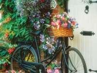 градински композиции