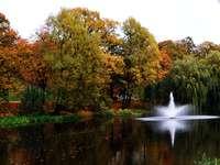 Park z fontanną. - Krajobraz. Park z fontanną.