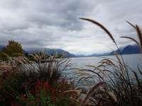 A tó partján