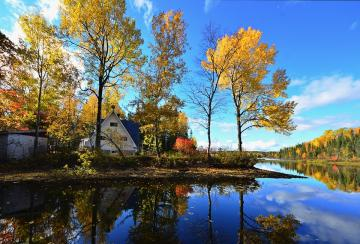Autumn over the water - Home and falling leaves on the water.