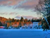 Зимен пейзаж - Снежни дървета къщи и красиво небе.