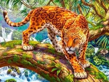 Jaguar na drzewie. - Zwierzęta. Jaguar na drzewie.