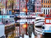 Amsterdam multicolor
