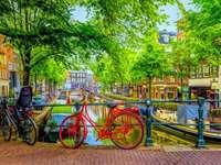 цветен Амстердам