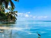Bajeczny widok - Wakacje , urlop, wypoczynek , zwiedzanie