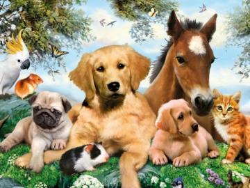Animals. - Puzzle: animals.