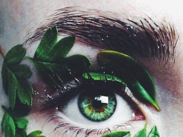 Oko artysty - Zielone oko artysty, fotografia