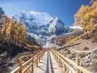 Δρόμος που οδηγεί στα βουνά. - Δρόμος που οδηγεί στα βουνά.