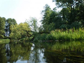Mazury spływ kajakiem - Mazury - spływ kajakiem