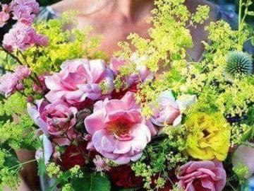 Schöne Blumen in einem Topf - Eine Komposition aus schönen Blumen in einem Topf